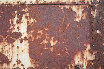 Wall Mural - rusty metal background