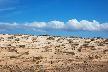 Beach of  Fuerteventura, Spain