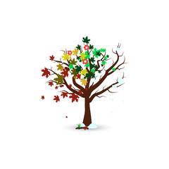 Four season in one trees isolated, nature environment maple tree concept vector illustration