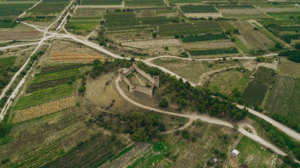 Bird's eye view of the Fort, corn and grape fields