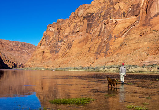 Fly Fisherman and Dog wading Colorado river near Lees Ferry AZ