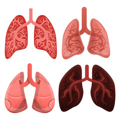 Lung icon set. Cartoon set of lung vector icons for web design