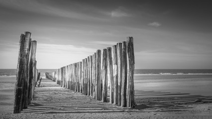Black and white view at wavebreakers disappearing in the calm and flat sea on the sandy and sunny beach of Westenschouwen, The Netherlands