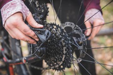 Close-up of hands repairing mountain bike in forest