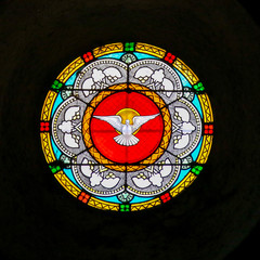 Holy Spirit- Dove - Stained Glass