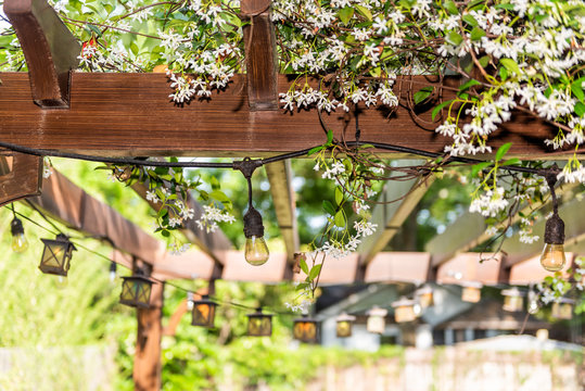 Closeup of patio outdoor spring white flower garden in backyard porch of home, lamps light bulbs, zen with pergola canopy wooden roof gazebo, plants
