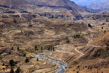Landscape in Peru, wildlife in Latin america