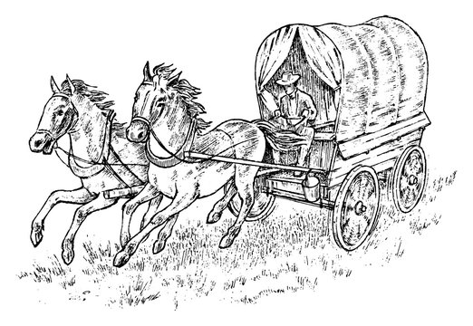Cowboy in the carriage. Vintage horse harness or sheriff s cart. Western rodeo icon, Texas Ranger, Sheriff in hat. Wild West, Country style. Hand drawn engraved sketch.