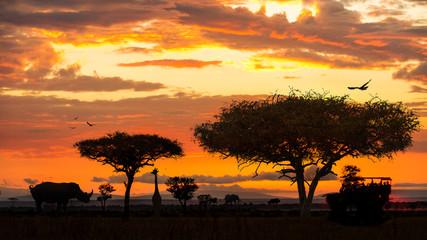Wall Mural - African Wildlife Safari Drive at Sunset