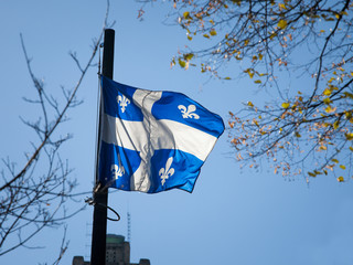 Quebec flag in front of a trees waiving in the air. Also known as Fleur de Lys, or fleurdelise, it is the official symbol of the Canadian province of Quebec.