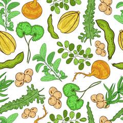 Superfood. Maca; gotu kola; coy; moringa; arjuna; laminaria; tarragon; guggul. Texture, background, wallpaper, seamless. Sketch.