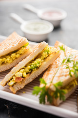 Paneer bhurji sandwich is a tasty paneer based dish made with cottage cheese.served with fresh tomato ketchup and green mint chutney. selective focus