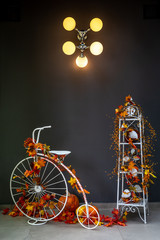 Autumn display with penny farthing
