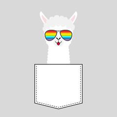 Alpaca llama face head in the pocket. Rainbow glasses. Cute cartoon animals. Kawaii character. Dash line. White and black color. T-shirt design. Baby gray background. Flat design.