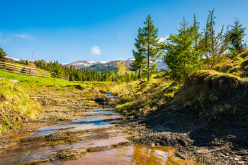 small brook in mountains. trees on the hill above the stream. mountain ridge with snowy tops in the distance. wonderful sunny day of springtime