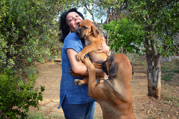 Mature happy woman is a new owner of Boerboel Mastiff puppy