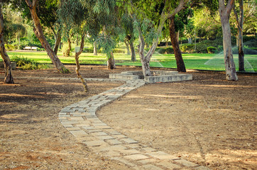 Grey brick footpath runs towards a Eucalyptus trees