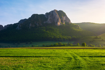 beautiful sunrise in mountains. wonderful springtime scenery with trees on a grassy meadow and huge rocky formation in the distance. location Piatra Secuiului, Romania