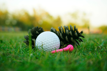 golf ball on green in beautiful golf course with sunset. Golf ball close up in golf coures at Thailand