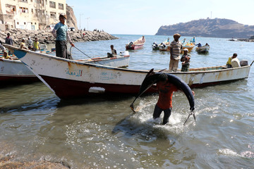 A fisherman carries a fish from a boat to a fish market in Aden