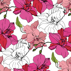Vector Pink Orchid flower. Seamless background pattern. Fabric wallpaper print texture. Engraved ink art.