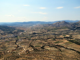 Europe, Greece, Corinth,stunning panorama of the  Peloponnese with wonderful olive groves