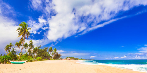 amazing wild beaches of Sri Lanka. Tangale, south of island