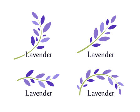 Lavender icons set. Violet leaves and green branch of lavender. Natural herb logo template. Vector illustration.