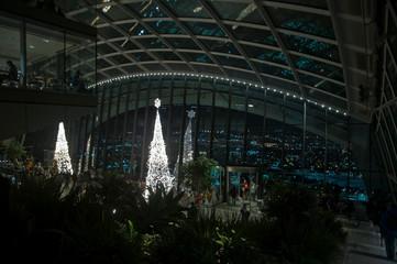 Sky Garden a Natale
