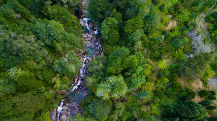 aerial view of pristine river surrounded by native forest