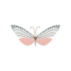 Beautiful, multi-colored butterfly with an unusual shape of the wings and patterns on them.
