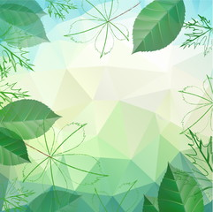 Abstract spring and summer background with leaves