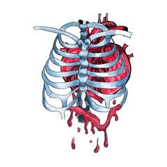 Watercolor bleeding human heart inside skeleton bones