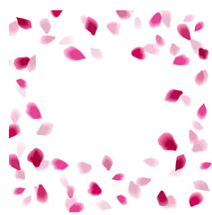 Petals abstract background