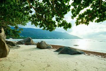 Seychelles tropical beach, beau vallon beach, mahe island