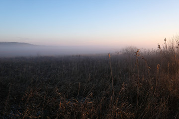 thick fog on a field an early winter morning