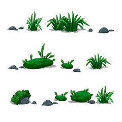 vector set of grass, herb, weed, herbage