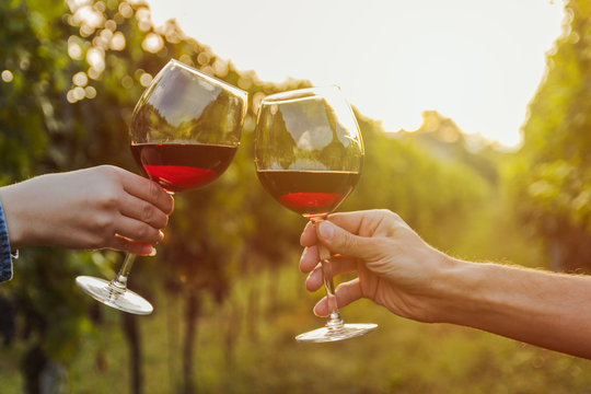 Two hands clinking red wine glass in a Vineyard during sunset.