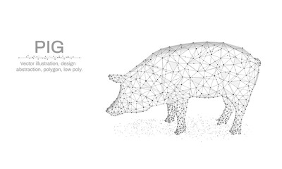 Pig, New Year illustration made by points and lines, polygonal, Low poly holiday background, animal abstract design illustration