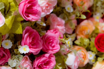 Plastic Roses Flowers Background