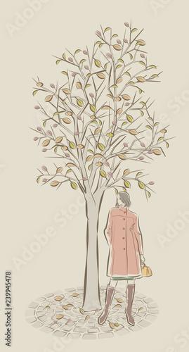美しい女性と背景のイラスト Stock Image And Royalty Free Vector