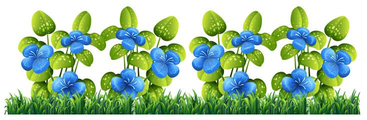 Isolated blue flower for decor