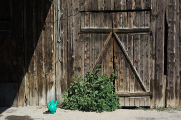 Landscape abandoned post-Soviet farm with a dilapidated wooden wall and the gate to the stall