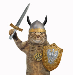The cat viking in a medallion and a helmet with horns holds a sword and a shield with a dragon image. White background.
