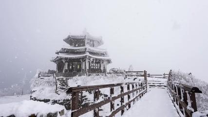 Wall Mural - Snow falling at Deogyusan mountains in winter, South Korea.