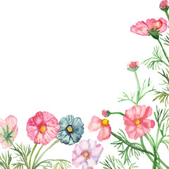 Watercolor frame delicate pink, lilac and blue flowers on green stems with needle leaves with falling petals isolated on white background.