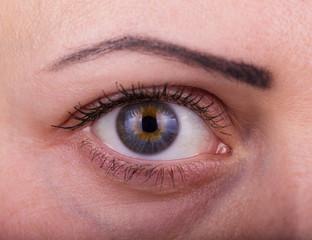 Human woman eye with day beauty makeup and long natural eyelashes