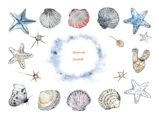 A collection of seashells and starfishes, corals, field plants and butterflies in the style of an outline, made in watercolor and ink for decorative use in design and decoration.