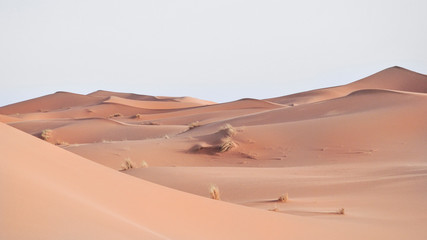 Erg Chebbi desert in marocco with evening light
