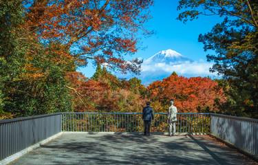 Traveler looking Mt.Fuji and colorful autumn leaf at Shiraito Falls in Fujinomiya, Shizuoka, Japan.